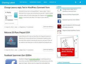 Access-Wordpress-theme1-400x300
