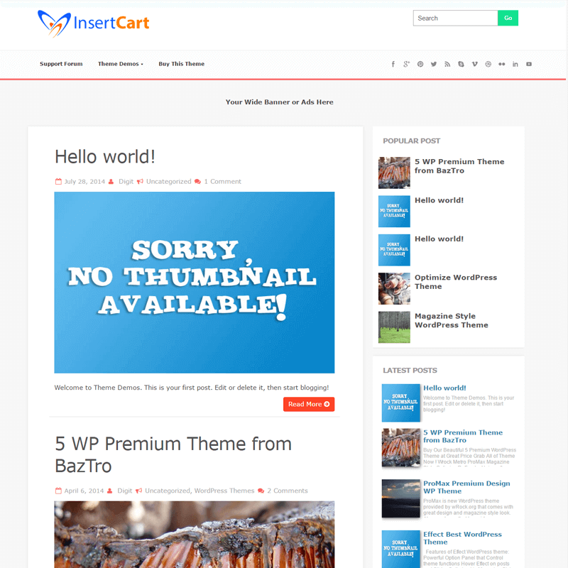 Welcome - WordPress Theme Store - InsertCart