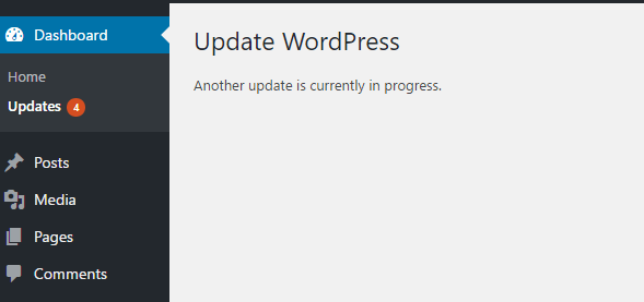 Wordpress update process